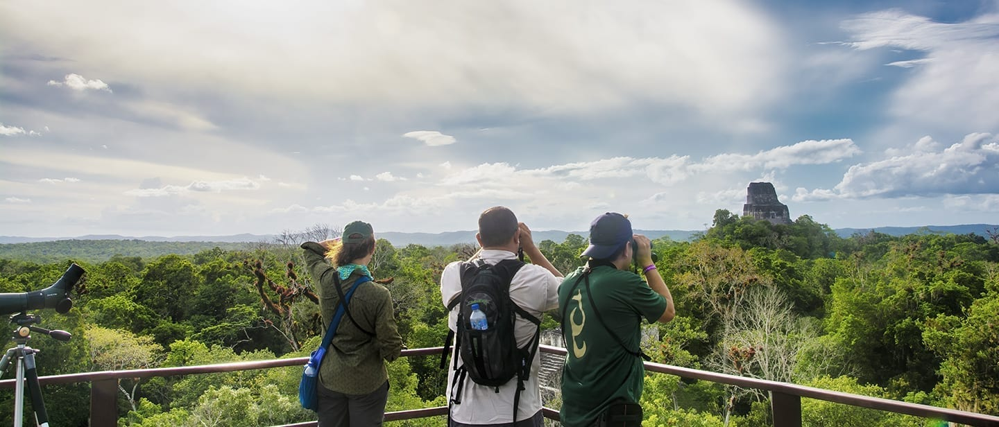 Birdwatching and Cultural Tours